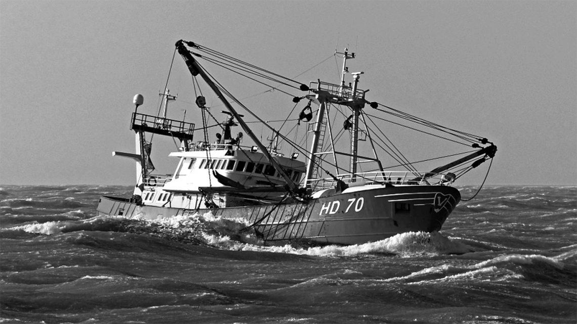 Van der Lee Seafish compra su propio buque pesquero